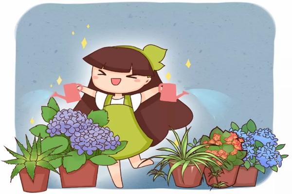 过年回老家,1个月不浇水,家里的花竟然长疯了!
