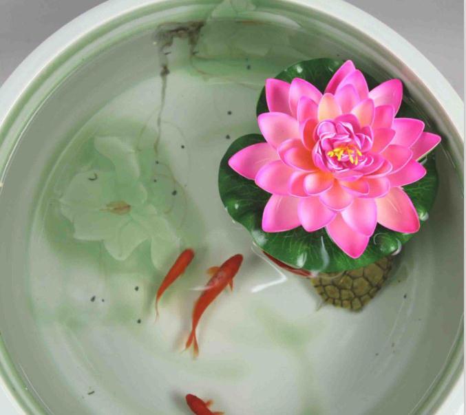 碗莲盆内养鱼