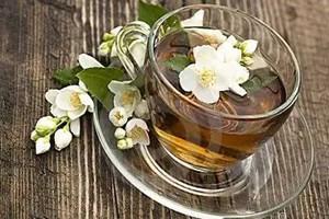 茉莉花可以泡茶