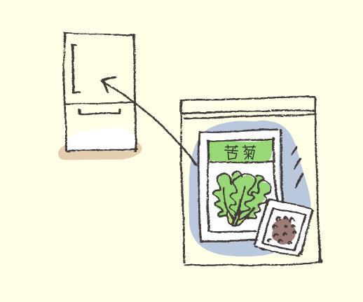 种子的保存方法