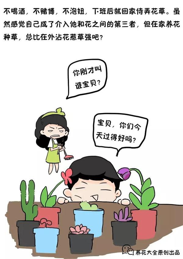 我的老公爱养花