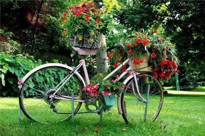 自行車花籃