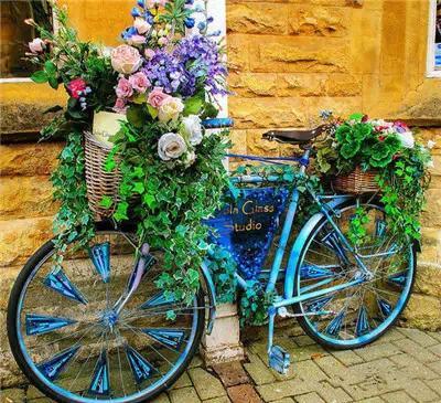 多彩的花朵