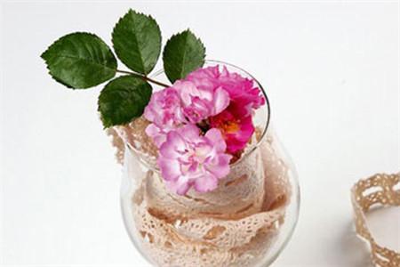 插入杯中的蔷薇叶子就起到了画龙点睛之笔,为单调的色彩添加了一丝