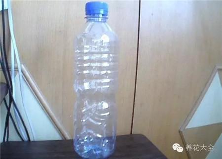 瓶里留下水