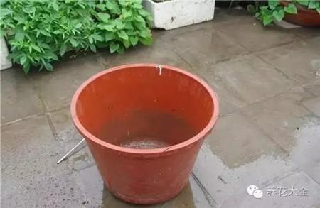 空空的水桶