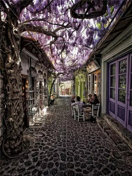 希腊莱斯沃斯岛