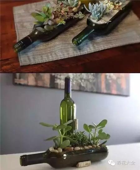 酒瓶花盆图片