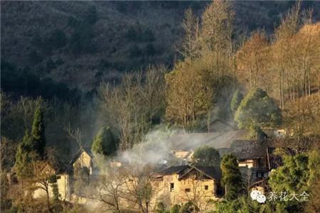 晨初,村子里飘荡着袅袅炊烟