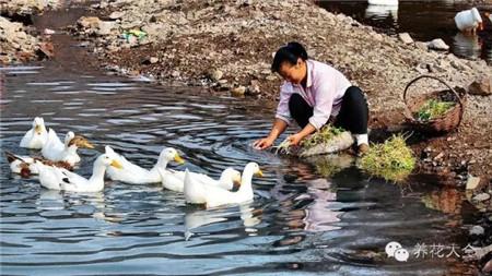 村边的小河就是免费的自来水