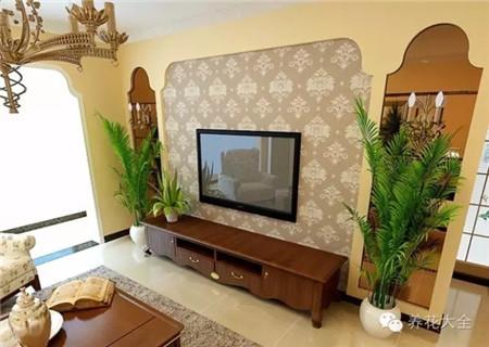 电视机旁边养花