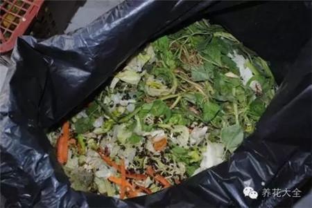 厨余废弃物