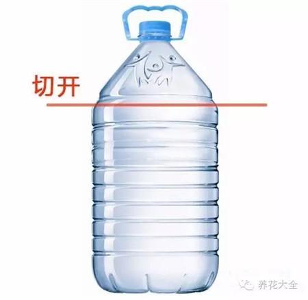 将矿泉水瓶清洗干净