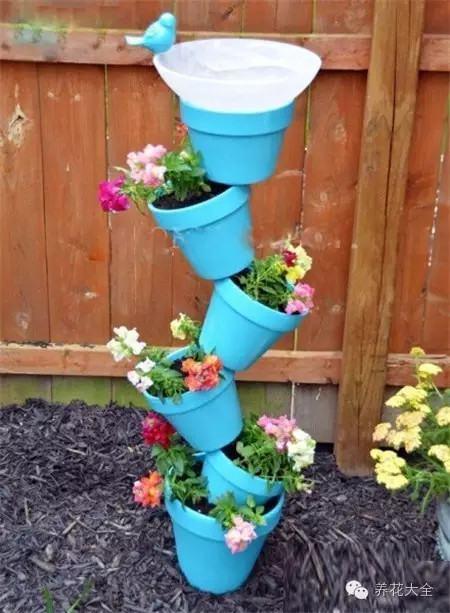 自动浇水花盆组