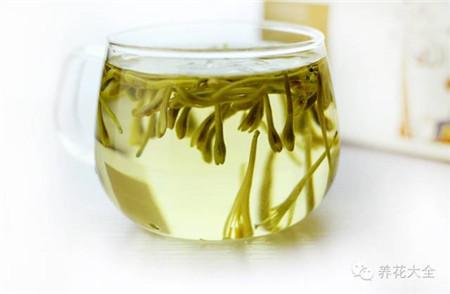金银花泡水