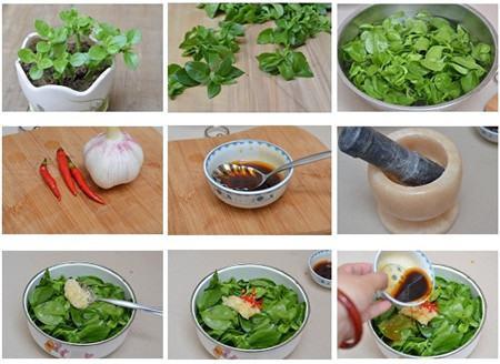 食用牡丹吊兰的具体做法