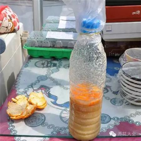 泡水发酵法