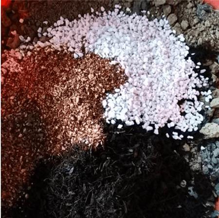 串钱藤土壤