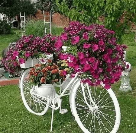 自行车花车