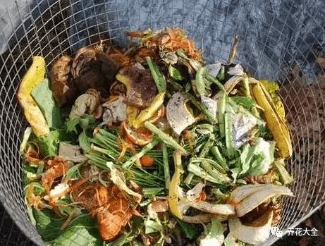 厨房垃圾堆肥