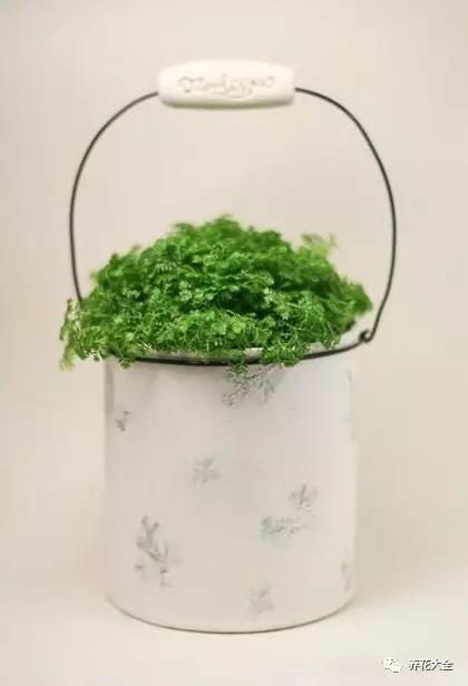 铁罐花盆2