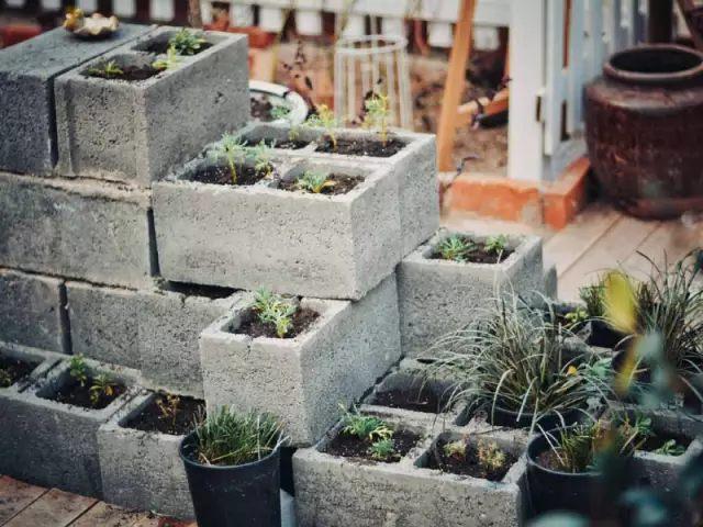 花园·19