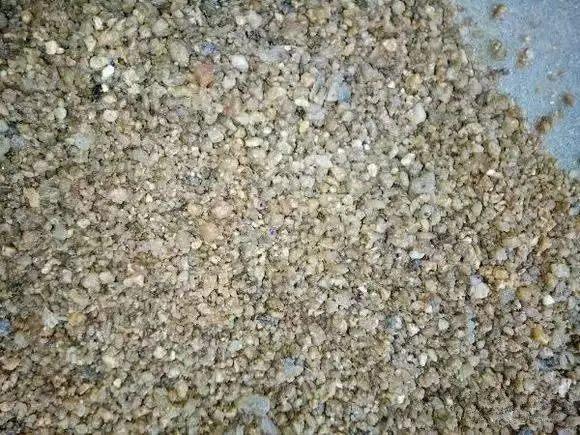 准备一个玻璃瓶或者塑料瓶,里面放入沙子,把沙子用水喷湿。