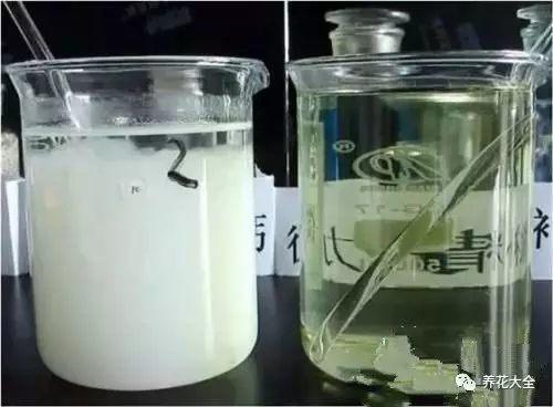 把硫酸亚铁按照1:2000的比例稀释,浇给茉莉花即可。