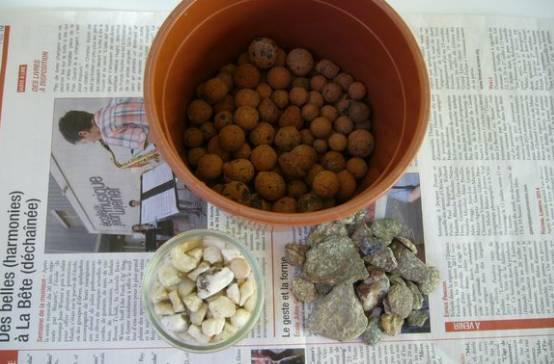 准备好营养土、陶粒、小石子儿~