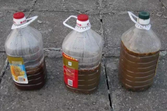 从菜市场卖鱼肠的那里要一些鱼肠,之后装在干净的塑料瓶子中,加点水后放在太阳下暴晒,大概间隔3-5天的时间就要打开盖子透透气。