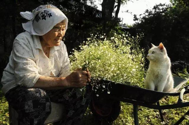 奶奶采来了一把满天星, 她开心的像个少女。 在夕阳下,我们静静对坐, 就像心意相通的老友。