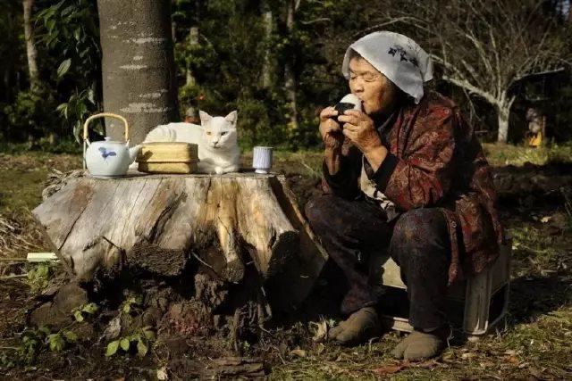 忙了一天, 在院子里坐一会儿, 来一杯下午茶, 感受暖阳的气息。