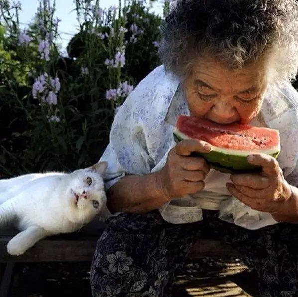 """""""奶奶,瓜甜吗?"""""""