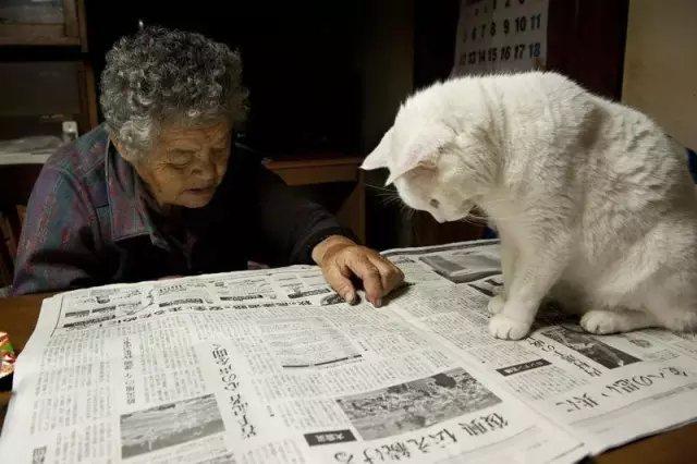 """""""奶奶,报纸上写的啥呀?"""""""