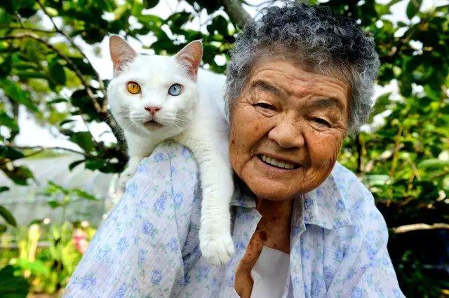 有奶奶的福丸, 是世界上最幸福的小猫, 有福丸的奶奶, 是世界上最幸福的奶奶。 他们为拥有彼此而幸福。