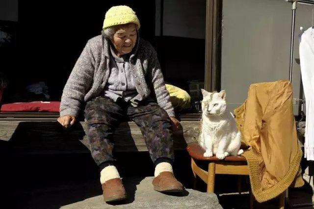 在最后一天打点滴时, 福丸脸庞憔悴, 还喵了一声, 似乎在跟奶奶告别。
