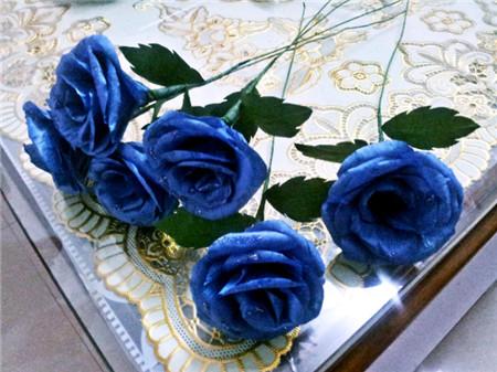 蓝色妖姬是干花吗_蓝色妖姬多少钱一朵 - 花百科
