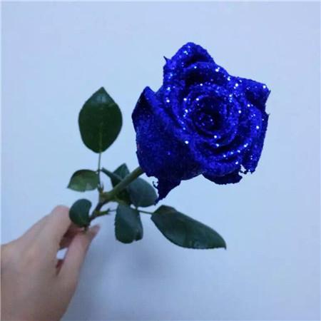 蓝色妖姬是干花吗_蓝色妖姬要怎么保存 - 花百科