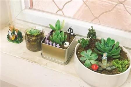 漂亮的自制花盆