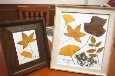 欧洲风树叶相框