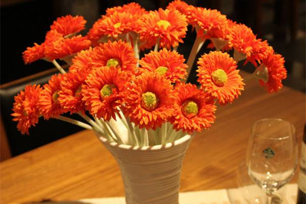 非洲菊瓶插怎样养护