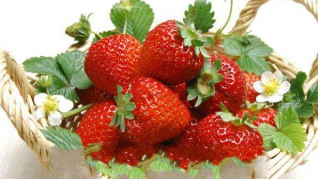 草莓的繁殖方式