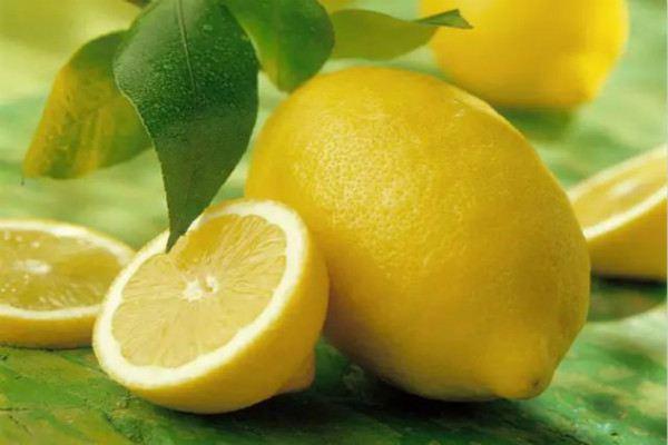 柠檬的常见品种