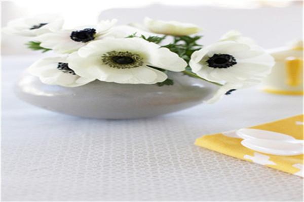 银莲花的功效和作用