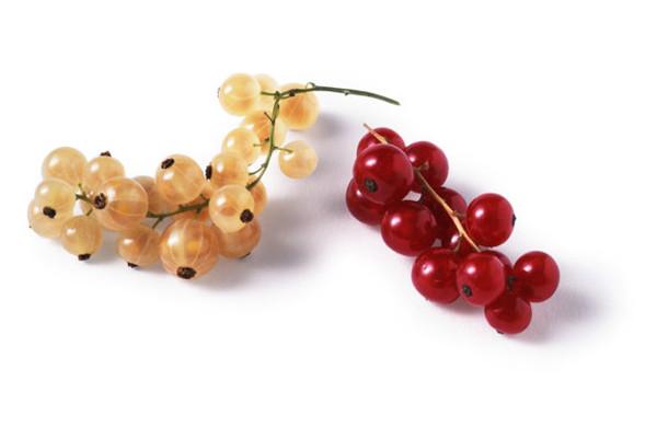 鹅莓的食用方法