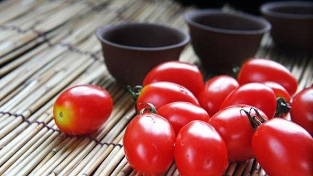 阳台种植圣女果的方法