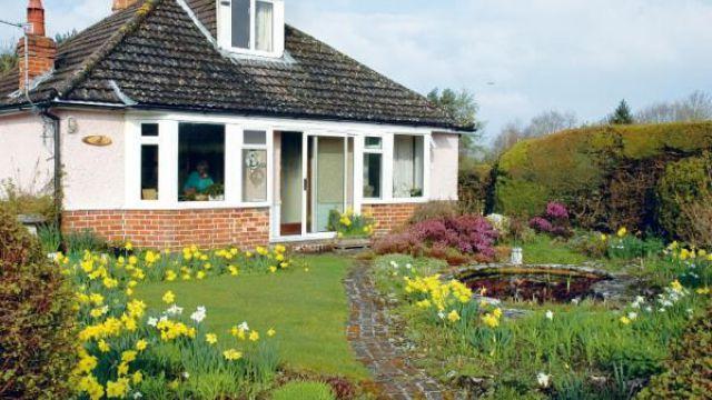 庭院花木修剪的意义和作用