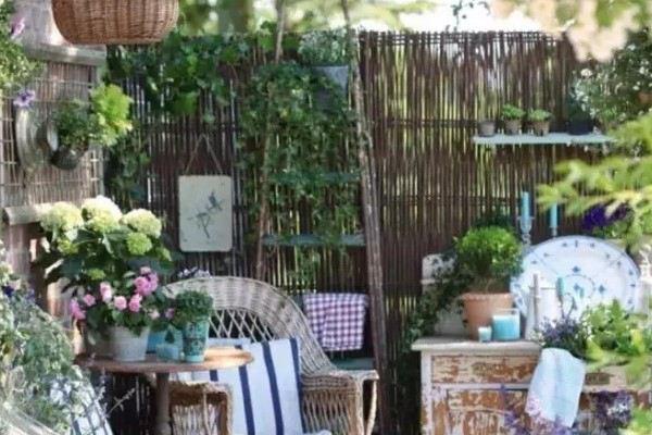 老来有个小院,手捧闲书,赏花喝茶!