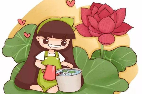这种花,清凉消暑又美味,人人都爱!