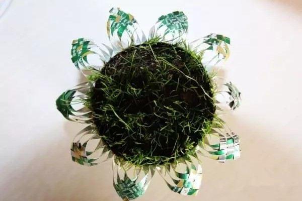 夏天喝完的易拉罐,剪刀一剪,拿来养花超级棒!